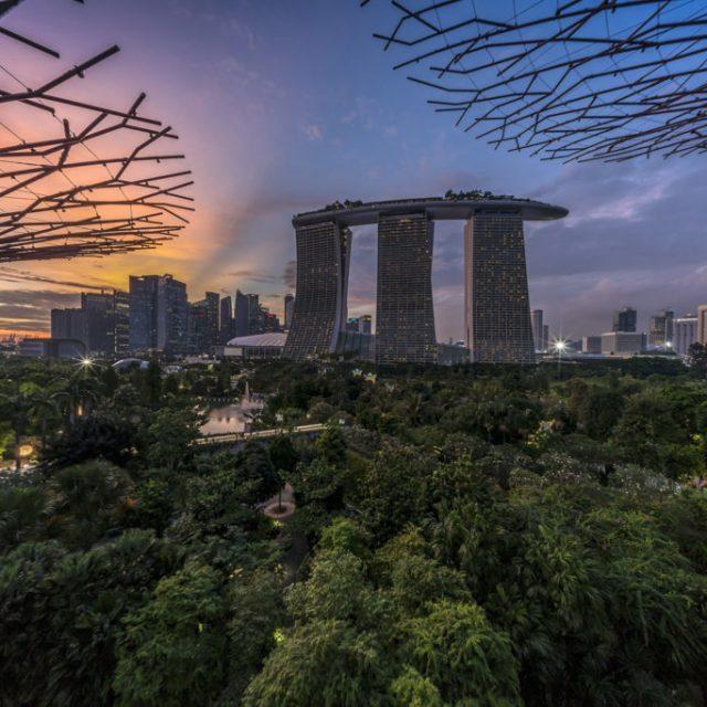 Photo courtesy of ART SG